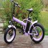 500W 20inch, das e-Fahrrad Rseb-507 faltet