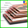 Crear la publicidad para requisitos particulares de la tarjeta del PVC