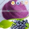 有機性Pure Natural Freeze/Spray -乾燥されたBlueberry Juice Powder