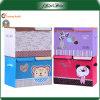 Nouveau récipient de boîte de stockage de collection de maison de carton de vente