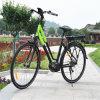 bicicleta da cidade de 36V 250W E com bateria traseira (RSEB-512)
