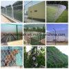 الصين بالجملة عذراء [شين لينك] سياج لأنّ بناية حماية