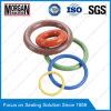 Polegada DIN/JIS/As568/GB3452 padrão/anel-O métrico da borracha de silicone de NBR/HNBR/FKM/EPDM
