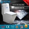 Zetel van het Toilet van Siphonic de Ééndelige Ceramische