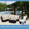 UV-Beständige PET Möbel-eindeutiges im Freienfreizeit-Sofa