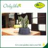 Planteur bleu de tissu d'Onlylife BSCI Oxford pour la décoration à la maison