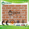 Hangende Platen van de Muur van het Comité van de Raad van het cement de Decoratieve
