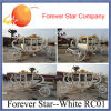 Princesse Horse Carriage, chariot royal