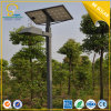 As luzes solares de Lanscape, jardim solar iluminam-se (SLL-S8)