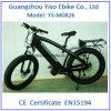 Jejua a bicicleta de montanha de 500 W com o motor de movimentação MEADOS DE