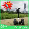 Motorino pieghevole del CE/del Portable approvato 2 rotelle di mobilità (CA1900B)