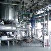 ASME anerkannter Phthal- Anhydrid-Produktionszweig