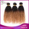 Estensione brasiliana dei capelli umani del Virgin riccio crespo di due colori