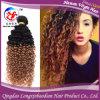 Человеческие волосы цветов тона утка 2 волос курчавой Remy девственницы Omber бразильские (HSTB-A812)