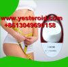 Nahrungsmittelgrad-Gewicht-Verlust-chemisches rohes Puder L-Carnitin 541-15-1