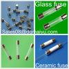 Fuse di ceramica 20 Years Experience su Fuse (Support su ordine) Glass Fuse Standard Auto Fuse