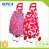 Shopping pieghevole Trolley Bag con 2 Wheels (SP-543)