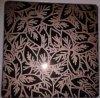 Доска нержавеющей стали цвета вытравливания зеркала AISI201/304/316 Coated