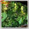 Parete artificiale dell'erba verde della decorazione di alta qualità