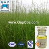 Natürliches Kuskusgras-Wurzel-Auszug-Vetiveröl