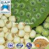 製造業者の供給のロータス種子植物のエキス
