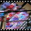 De veelkleurige Ambacht van het Glas Murano voor Decoratie