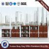 Armário de armazenamento da melamina moderna de 2 portas baixo (HX-GA0015)
