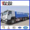 Camion de pieu de charron de HOWO 6X4 10