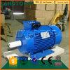 China Dreiphasen-Wechselstrom-Wasserpumpenmotor