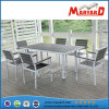 Jardim contemporâneo Set de Polywood com Rectangle Dining Table e jardim Chair de Plastic