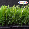 Real Grass (QS-30)人工的なTurf/Artificial Grass