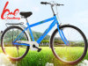 bicicleta 2017new modelo para o adulto com baixo preço