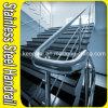 Balustrade d'escalier d'acier inoxydable (finition de satin)