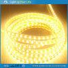 Sunrain LED Strip Light IP44 100m/Roll 220V