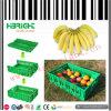 Coffre empilable en plastique de caisse de fruit de caisse pour des fermes