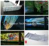 Cortina video transparente creativa do diodo emissor de luz das vendas quentes para a parede de vidro