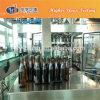Ligne remplissante carbonatée des boissons non alcoolisées /CSD de bouteille en verre