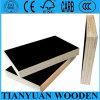 Película impermeável madeira compensada Shuttering enfrentada/madeira compensada comum do dedo