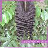 La fermeture brésilienne bon marché rapièce des fermetures de cheveu de lacet