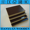 18m m Black Film Faced Plywood/Construction Shuttering Marine Plywood