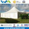 [8إكس8م] [بفك] بناء [غزبو] خيمة لأنّ عمليّة بيع