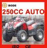 Nueva 250cc granja automática ATV (MC-356)