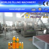 Автоматические 2 в 1 Bottle Pulp Juice Packaging Machine (RGF18-6)