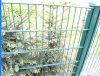 정원 (TS-L101)를 위한 두 배 Wire Mesh Fence