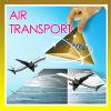 De Vracht van de lucht van Shenzhen Hongkong aan Indonesië Djakarta --- Messi Lee