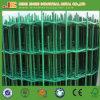 Il PVC verde ha ricoperto la rete fissa del reticolato di saldatura dell'Olanda della curvatura di V