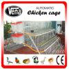 Design automatique Layer Chicken Cages pour Poultry Use