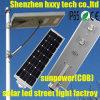 lámpara de calle solar de 30W 60W 80W LED