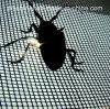 UV 보호 반대로 곤충 그물Virgin HDPE 반대로 곤충 그물