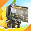 Mangofrucht-entsteinende Maschine, zum des Steins und der Schale der Mangofrucht zu entfernen